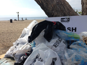 Trash--Topanga-Beach-cleanup